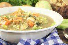与菜的热的圆白菜炖煮的食物 免版税图库摄影