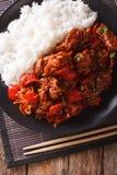 与菜的猪肉和装饰在亚洲样式的米 垂直的t 库存图片