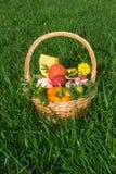 与菜的篮子在草 免版税图库摄影