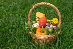 与菜的篮子在草 库存图片
