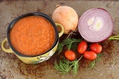 与菜的蕃茄汤 免版税库存照片