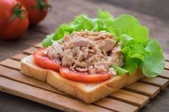 与菜的金枪鱼三明治 库存图片