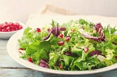 与菠菜、frisee、芝麻菜、拉迪基奥和石榴种子的蔬菜沙拉在蓝色木背景 免版税库存照片
