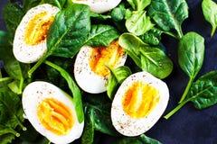 与菠菜婴孩叶子和煮沸的鸡蛋的蔬菜沙拉背景 免版税库存照片