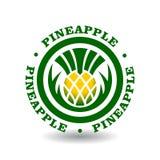 与菠萝标志的简单的圆的略写法 库存图片