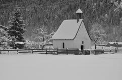 与菠萝树和教堂的冬天风景 免版税库存图片