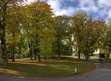 与落叶树的秋天风景在公园 免版税库存图片
