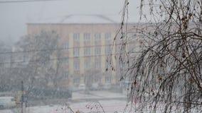与落在有不生叶的桦树的一个城市的雪的都市风景 股票录像