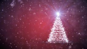 与落的雪花的增长的圣诞树 股票录像