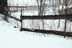 与落的雪从喀尔巴阡山脉的地区,乌克兰,欧洲的一个多雪的冬天场面 免版税图库摄影