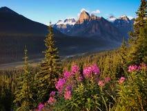 与落矶山的美好的风景日落的在班夫国家公园,亚伯大,加拿大 库存照片