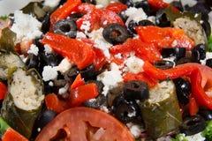 与葡萄叶包饭特写镜头的希腊沙拉 免版税图库摄影
