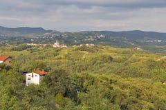 与葡萄园和Biljana村庄,斯洛文尼亚的农村地中海风景 免版税库存照片