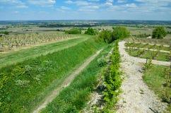 与葡萄园的法国农村风景 免版税库存照片
