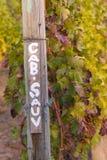 与葡萄树的赤霞珠路标在秋天 库存图片