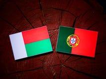 与葡萄牙旗子的马达加斯加旗子在被隔绝的树桩 库存例证