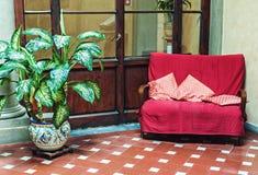 与葡萄酒长沙发和盆的植物的经典内部 库存照片