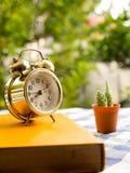 与葡萄酒闹钟和仙人掌的黄皮书在蓝色格子花呢披肩桌布 图库摄影