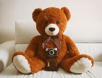 与葡萄酒35mm照相机的玩具熊 免版税库存图片