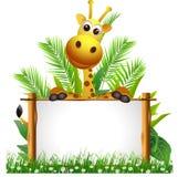 与董事会的逗人喜爱的长颈鹿 库存照片