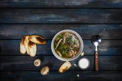 与葱酸性稀奶油和面包油炸马铃薯片的新鲜的蘑菇汤 在白色碗dishe 色的木背景,匙子 免版税库存照片