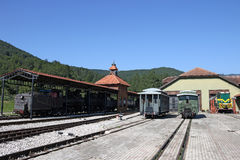 与蒸汽和内燃机车的火车站 免版税库存照片