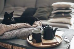 与蒸汽的茶在屋子里在早晨阳光下 免版税图库摄影