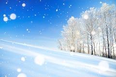 与蓝天、领域和森林的冬天风景a 免版税库存图片