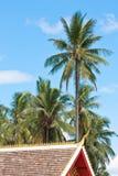 与蓝天和云彩的椰子树和一部分的寺庙屋顶 免版税库存图片
