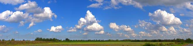 与蓝天和松的云彩的全景风景 免版税库存照片