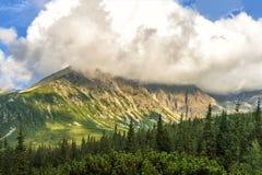 与蓝天和白色云彩的波兰Tatra山夏天风景 免版税库存照片