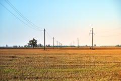 与蓝天和输电线的农业领域 农村自然在农场土地 在草甸的秸杆 库存图片