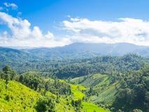 与蓝天白色云彩的绿色山 库存图片