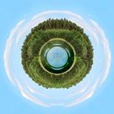 与蓝天的圈子树 免版税图库摄影