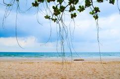 与蓝天的海滩 免版税库存照片