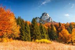 与蓝天的秋天风景 免版税库存照片