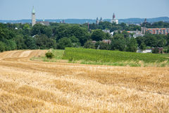 与蓝天的葡萄园和庄稼领域 库存图片
