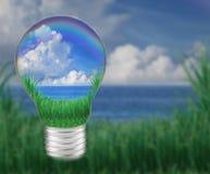 与蓝天空白云彩的大海在电灯泡似乎保存本质和好环境 免版税库存图片
