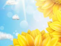 与蓝天-秋天的向日葵 10 eps 免版税库存照片