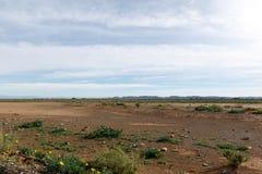 与蓝色云彩的空的空间在Tankwa南部非洲的干旱台地高原 免版税图库摄影