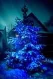 与蓝色光的室外圣诞树 免版税库存照片