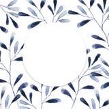 与蓝色和白色八仙花属花的圈子框架在白色背景 化妆用品的花卉设计,香水,秀丽关心产品 图库摄影