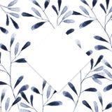 与蓝色和白色八仙花属花的框架在白色背景 化妆用品的花卉设计,香水,秀丽关心产品 能 皇族释放例证
