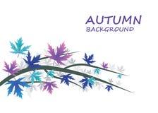 与蓝色和紫色叶子的抽象秋天背景 免版税库存照片