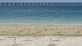 与蓝色和绿浪的空的海滩 库存照片