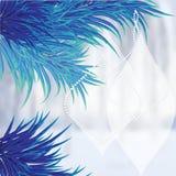 与蓝色圣诞树的典雅的背景 免版税库存图片
