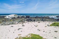 与蓝色大西洋的Lanzerote海滩 免版税库存照片
