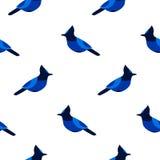 与蓝色尖嘴鸟的无缝的样式 纺织品和包裹的装饰品 免版税图库摄影