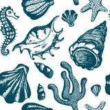 与蓝色手拉的贝壳的无缝的样式 海洋背景 导航与贝壳的葡萄酒纹理,珊瑚,海马 免版税库存图片