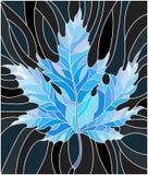 与蓝色枫叶的彩色玻璃例证在黑背景 免版税库存照片